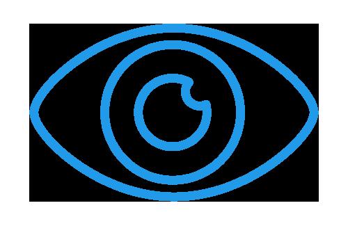 Icone domaine optique